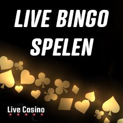 Online Bingo Spelen – De Beste Bingo Live Casino's van 2021!